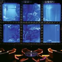 海亀の水槽を一望できるプレミアムシート