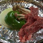 ニューあかいけ - 鹿肉(精進湖定食)
