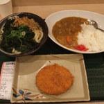 41127149 - カレーセット(まるごとわかめうどん)+北海道男爵のコロッケ