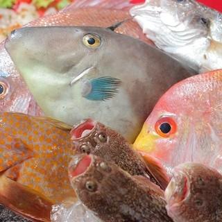 新潟糸魚川の漁師さん直送