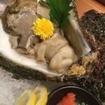 美山の味 勝手屋 - 日間賀産  天然岩ガキ 1,800円