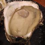 とぶさかな はなれ - 京都の牡蠣 480円/1ピース