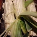 41272988 - 生で食べれるトウモロコシ ピュアホワイト