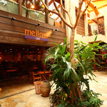 メロー カフェ - 外観写真:ガラス張りで開放的な店内と大きく育ったヤシの木が目印。