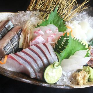 九州からの朝獲れ鮮魚直送便