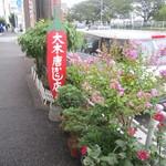 大木唐からし店 - 表の看板