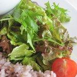 欧風居酒屋 Bistro AU BASCOU - プレートには野菜がたっぷり。