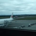 41363421 - ゲートの上階なので飛行機が見えますよ