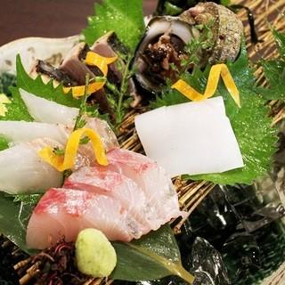 九州直送の鮮魚料理
