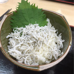 岸和田サービスエリア(下り線)スナックコーナー - しらすご飯