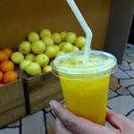 ジューシーヒャクパーセント - マンゴージュースはマンゴーの味でした(当たり前か 笑)
