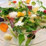 レストラン タテル ヨシノ 銀座 - 前菜 季節の野菜 庭園風