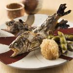 和味 大輔 - ヤマメの塩焼き~旬のお魚を塩焼きにしました~