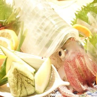 ◆長崎平戸直送仕入〜活いかご提供します。お造り刺身も人気