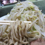 島系本店 - 極太麺。細い普通麺もあります。