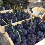 岩波農園 - 料理写真:収穫されたふじみのり