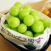 グリーンファーム - 料理写真:シャインマスカット(1500円)