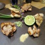 四季彩 葉月 - シャモロックの焼き物