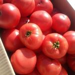 一笑一盃 - 自家製トマト
