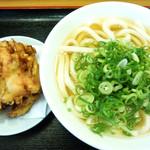 41724361 - 「えびと野菜のかき揚げ」うどん+葱