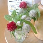 小さな宿&レストラン しいの木やま - 白と紅色の毬のような今日の小花