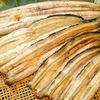 魚料理ひろせ - 料理写真:天然うなぎ白焼き(時価)