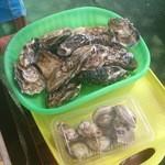 41801821 - 牡蠣ざる、蛤