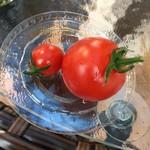 41858294 - 小さいトマトがかなり甘くて濃厚でした。