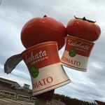 41858301 - 駐車場にある大きなトマトのオブジェ
