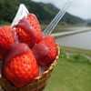 Asamuraichigoen - 料理写真: