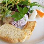 アルベロ - 前菜:麦イカのパテとサラダ、メルバトースト添え