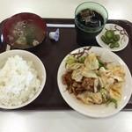 定食屋まんぷく。 - 料理写真:豚肉とキャベツの辛みそ炒め定食