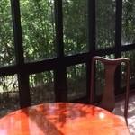 緑蔭洞 - 晴れ間に陽射しが眩しいテラス
