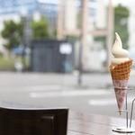 gioia cafe - 牛乳ソフトクリーム2