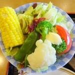 42007722 - てんこもりの色鮮やかなサラダ