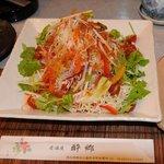 4202870 - 9種類の野菜サラダ