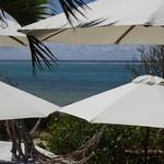 島野菜カフェ Re:Hellow BEACH - 店内からの眺め テラス席