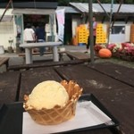 栗駒フーズ - 手焼きワッフルジェラート(かぼちゃ)