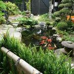 元祖瓦そば たかせ - 裏庭の池の鯉