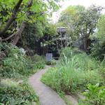 cafe kaeru - お店の庭