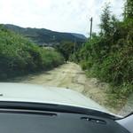 山 - 「山」に至る道はご覧のとおり狭隘悪路に加え未舗装