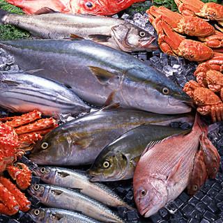 「朝獲れ」三島半島の旬の魚を直接買い付けて店舗へ