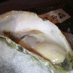 424316 - 宮城産生牡蠣
