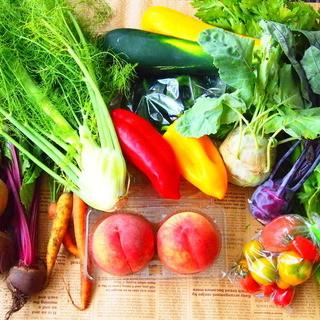 ◆無農薬、有機野菜を中心としたイタリアン♪