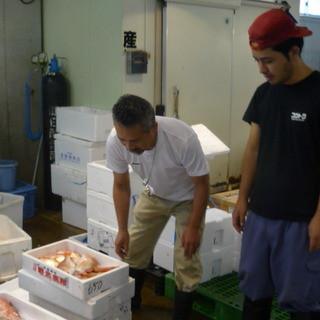 この道35年以上の大将が市場で買い付ける魚介類は絶品☆