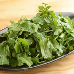 クレソン、パクチーのグリーンサラダ