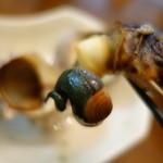 鈴木水産 - 2015.10 サザエのしっぽまできれいに抜けました♪