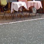 ミヤハラ - 内まで桜の花びらが押し寄せてました