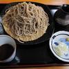 Datsusarasobayanekonoshippo - 料理写真:「大もり蕎麦 \800」は、290g・・・。