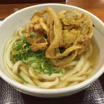 鳴門製麺 - 料理写真:かけ大 ゴボウ天のせ